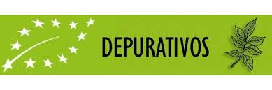 Depurativos y diuréticos