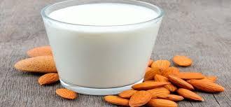 Sustitutos lácteos