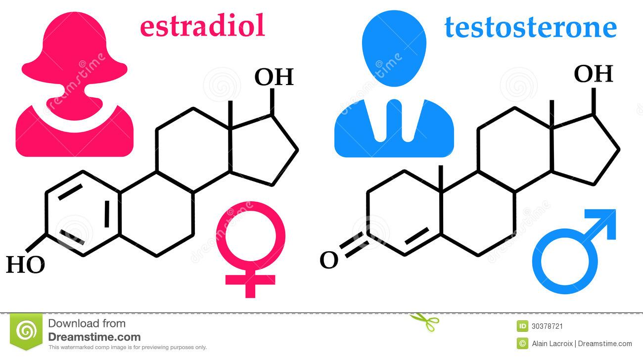 HORMONAS,SEXUALIDAD Y PRÓSTATA